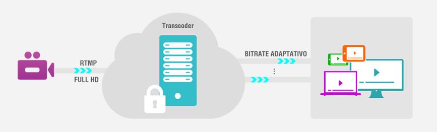 grafico-transcoder-site-live